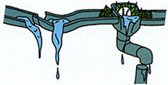雨樋の点検について
